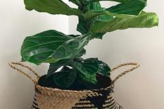 2. Natural Craft Seagrass Basket $17.88